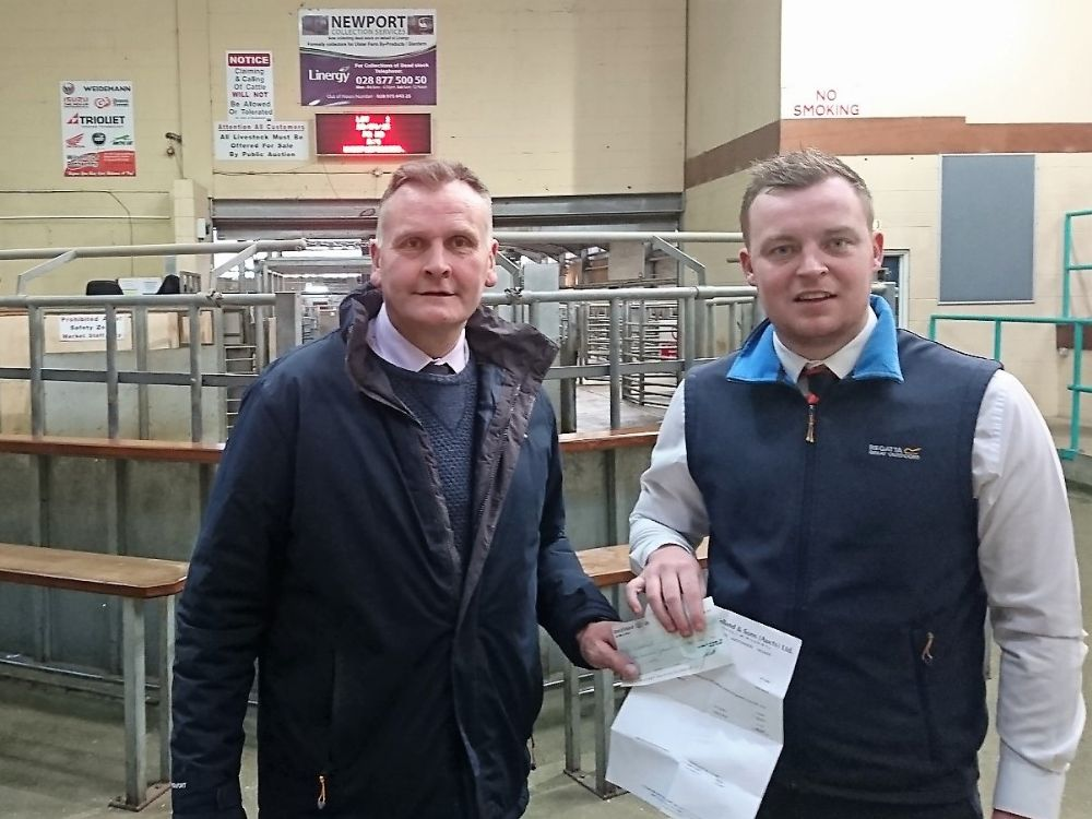 Wilsons of Rathkenny continue Ballymena Mart Partnership